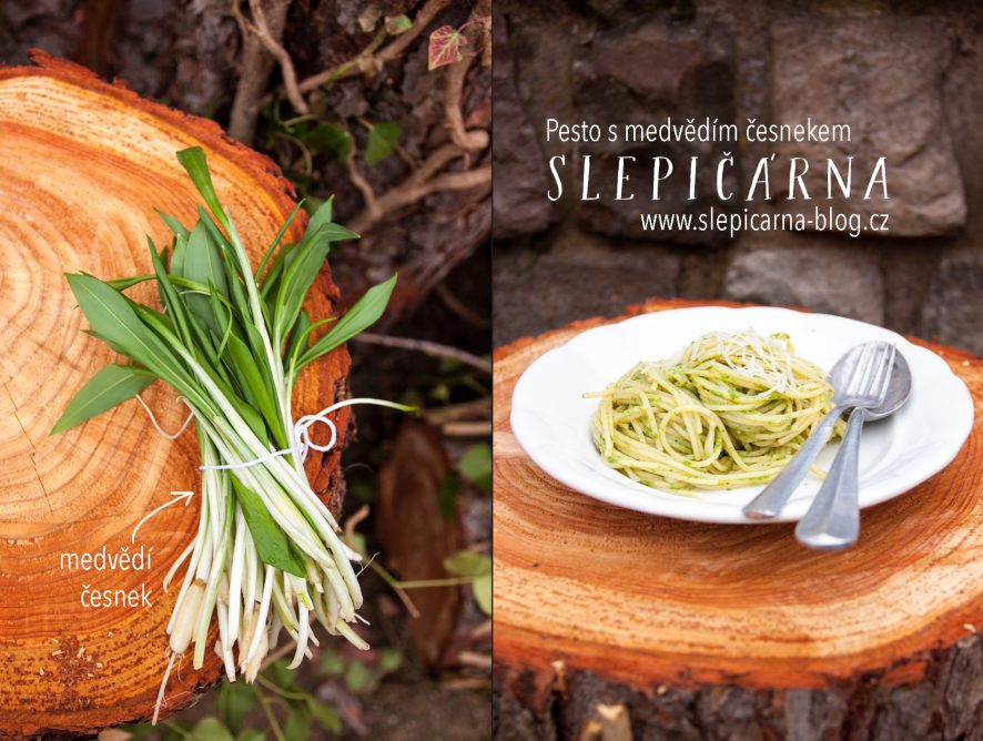 Špagety s pestem z medvědího česneku