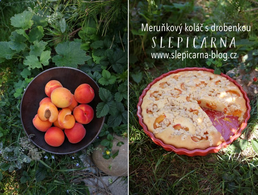 Letní koláč? Meruňkový s drobenkou!