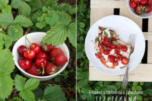 Nadýchané trhance s třešněmi a jahodami