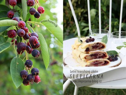 Indiánské léto s tvarohovým závinem a plody muchovníku