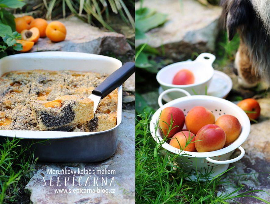 Meruňkový koláč s mákem a  drobenkou