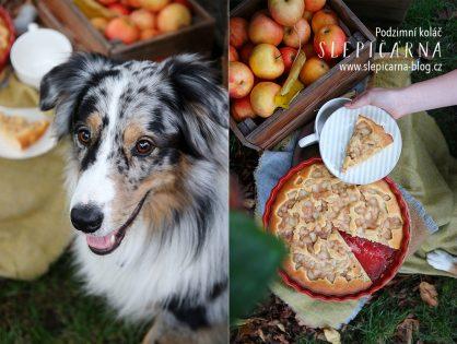 Podzimní koláč? Zapojte jablka, hrušky a ořechy!