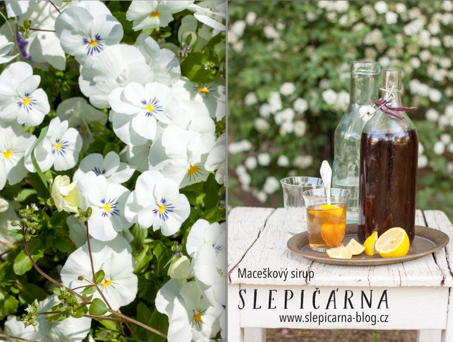 Jedlé květy: Jak na domácí maceškový sirup